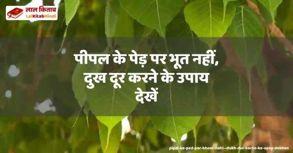 pipal ke ped par bhoot nahi